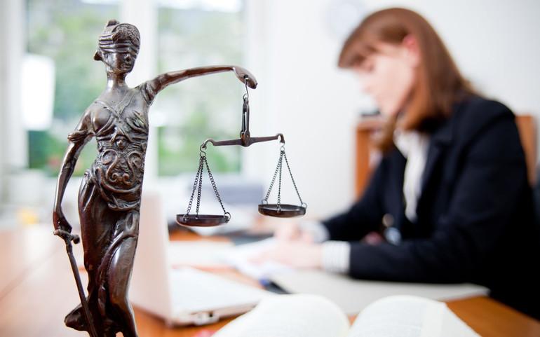 Адвокаты и юристы